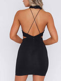 Black Halter Lace Panel Open Back Bodycon Mini Dress