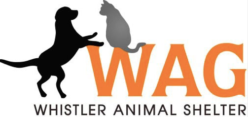 Whistler Animal Shelter Donation Recipient Pilot Pet Gear