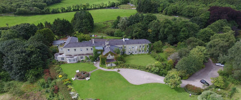 Crann Eco-friendly Irish Stays