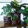 Midnight Copper Planter - Medium