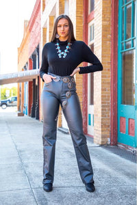 L&B Metallic Jeans w/ stretch several colors to choose from