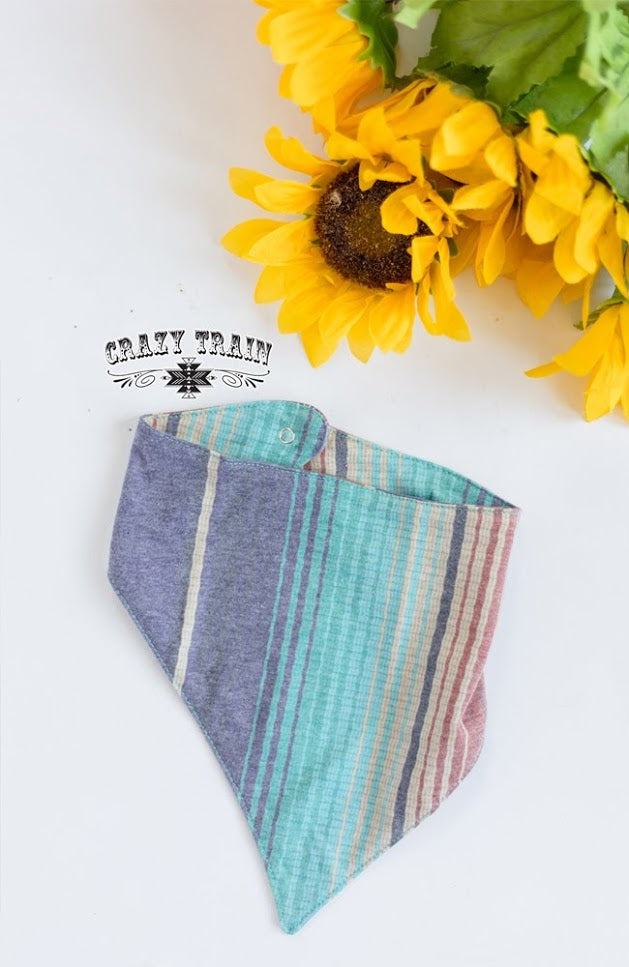 Crazy Train Serape-1 Bib, Snaps On, Looks lIke A Bandana