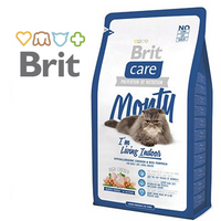 BRIT CARE MONTY INDOOR CAT
