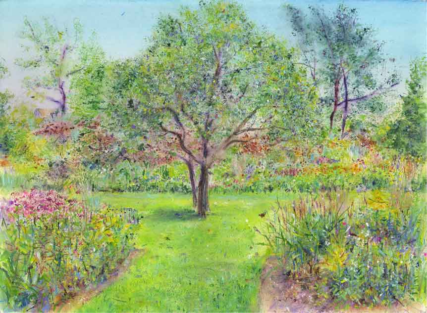 Painting of Maytenus boaria tree at RHS Garden Harlow Carr by Anita Bowerman