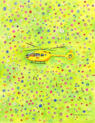 Yorkshire Air Ambulance helicopter landing in a field of flowers notelet