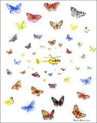 Yorkshire Butterflies and Yorkshire Air Ambulance Helicopter notelet