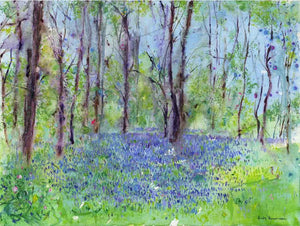 A Carpet of Bluebells, unframed original painting