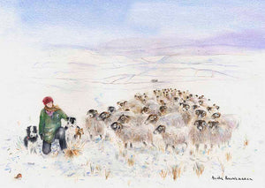 Amanda Owen, The Yorkshire Shepherdess and Her Flock at Swaledale, print