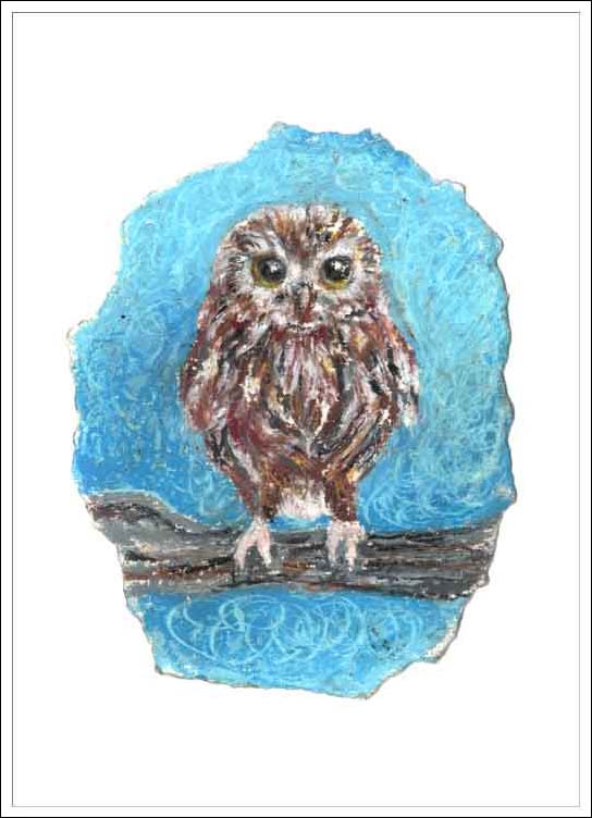 Baby Little Owl, unframed Giclée limited edition print