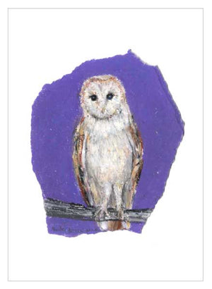 Barn Owl, unframed original drawing