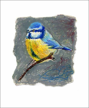 Blue Tit, unframed Giclée limited edition print