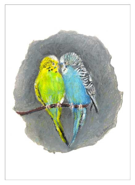 Budgie Love, unframed original drawing