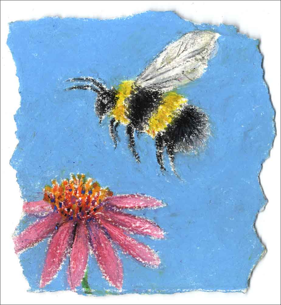 Flower and Bee, unframed Giclée limited edition print