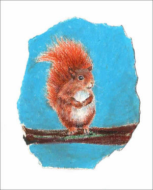 Red Squirrel, unframed Giclée limited edition print