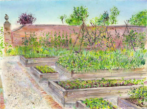 Rudding Park Kitchen Garden, unframed Giclée limited edition print