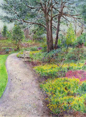 Tête-à-Têtes, Sandstone at RHS Garden Harlow Carr, February, original painting
