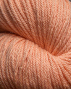 Jagger Spun - Super Lamp - Worsted Yarn - Apricot
