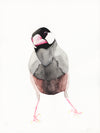 Java sparrow watercolor painting