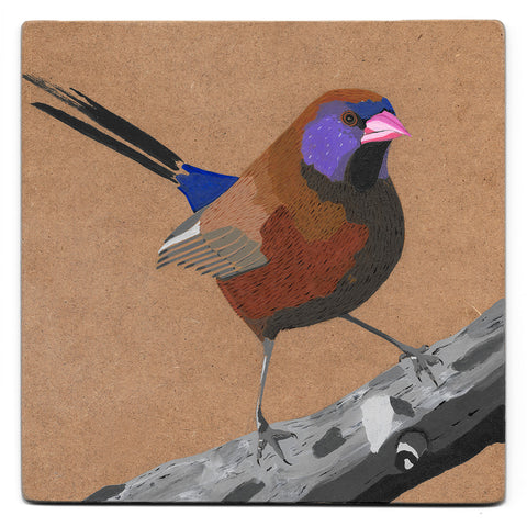 Violet-eared waxbill acrylic painting