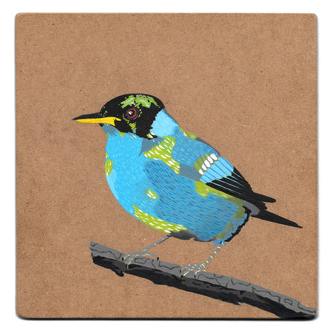 Green honeycreeper acrylic painting