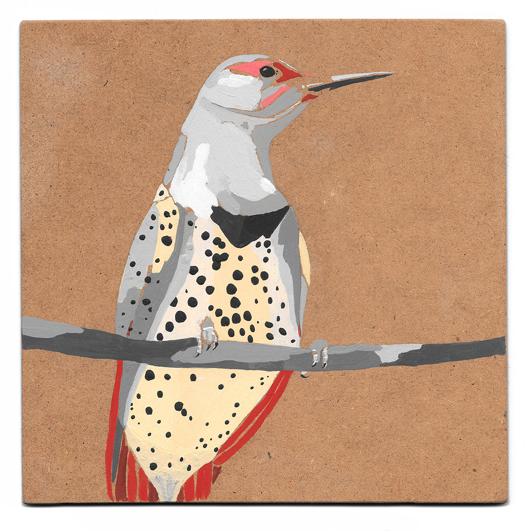 Norther flicker acrylic painting