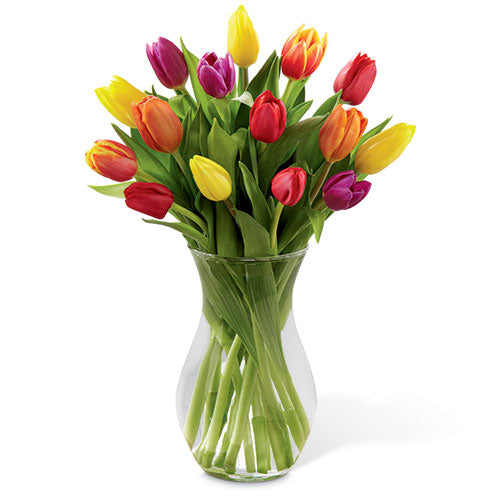 Spring Mix Tulips