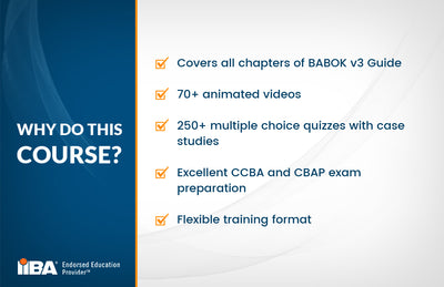 BAE STAGE 2 BABOK® v3.0 CORE PRACTITIONER - EARN 22 PD Hours / CDUs