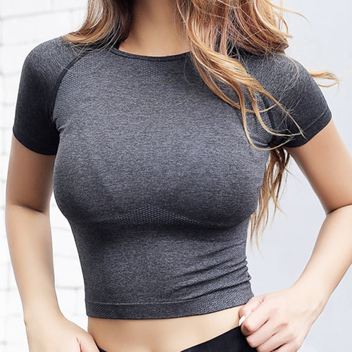Quick Dry Women Cropped Seamless Short Sleeve Top  Womens Workout Tops  Sports Wear for Women Gym  Women Sexy Shirt