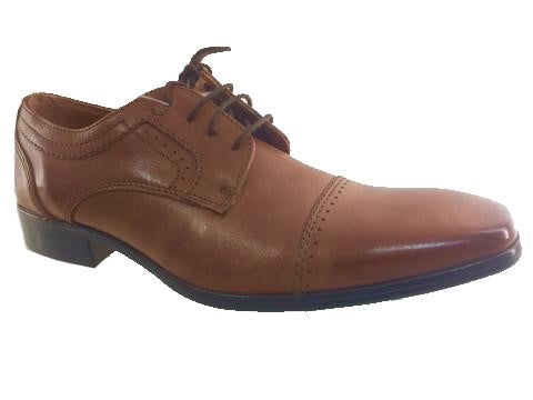 Laced brown formal/dressy Dubarry Mens shoe,