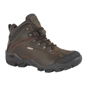 women's brown leather waterproof hiking boots