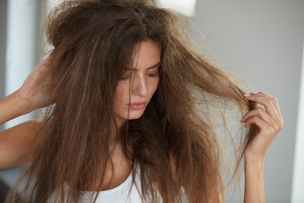 frizzy dry hair