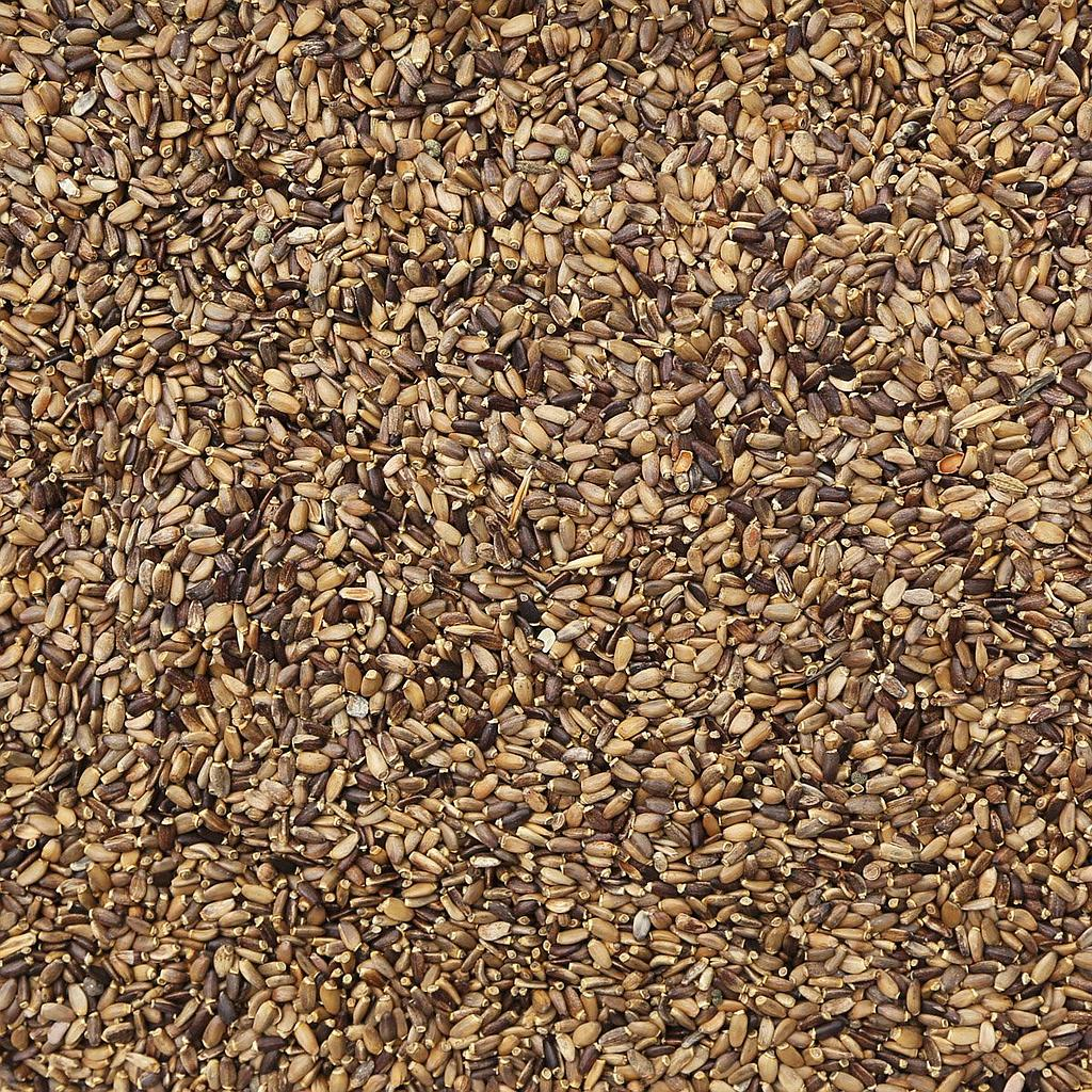 ORGANIC MILK THISTLE SEED, whole