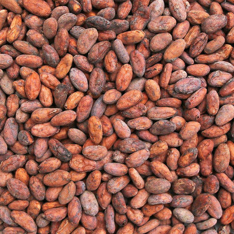 CACAO BEANS, whole, unpeeled, raw, 100% Arriba Criollo | Organic Matters