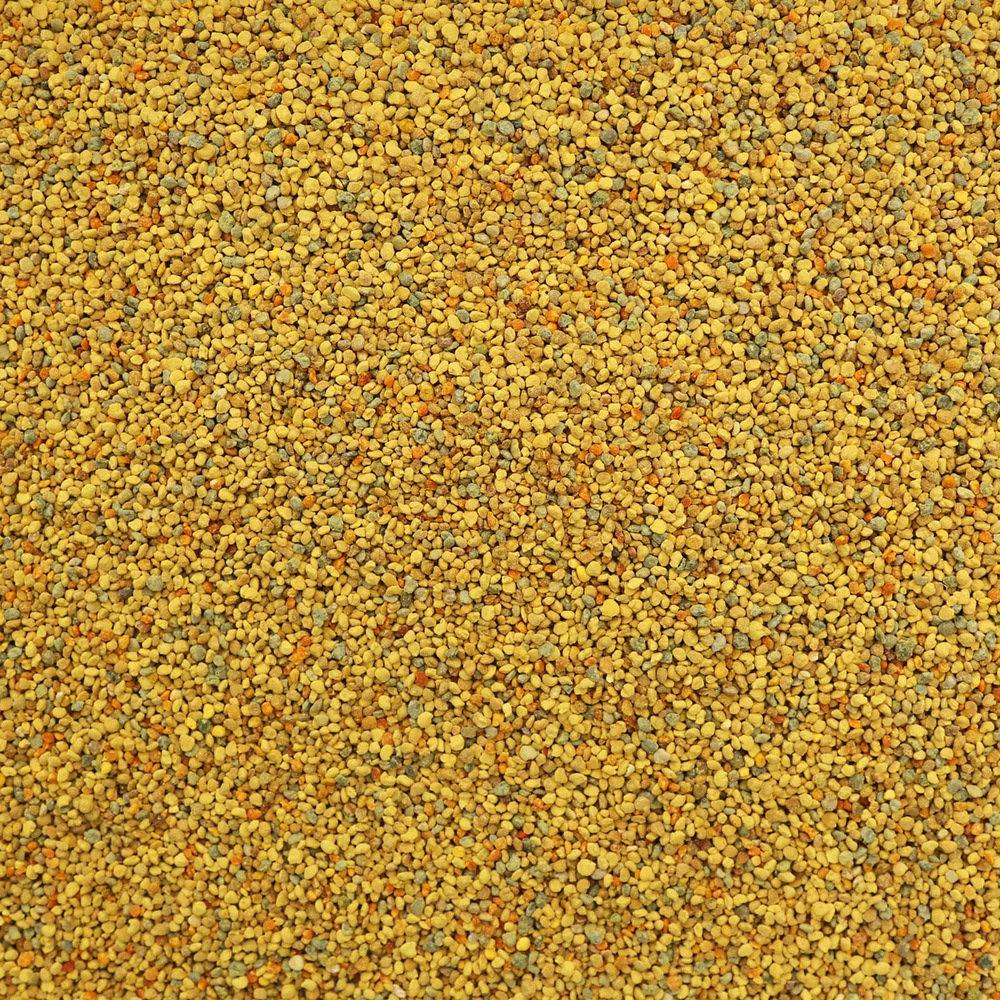 BEE POLLEN, Canadian, wild harvested | Organic Matters