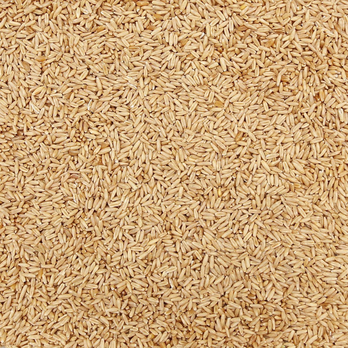 ORGANIC OAT GROATS, whole