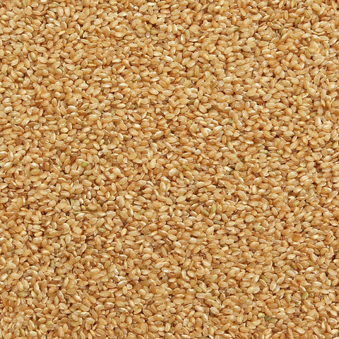 ORGANIC RICE, short grain, brown | Organic Matters