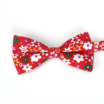 Amesbury Red Bow Tie