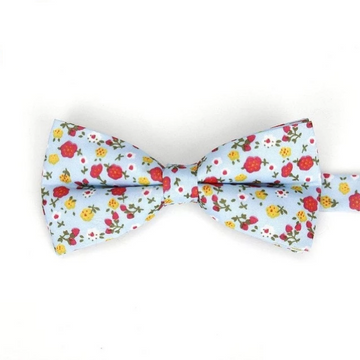 Hemsworth Sky Blue Bow Tie