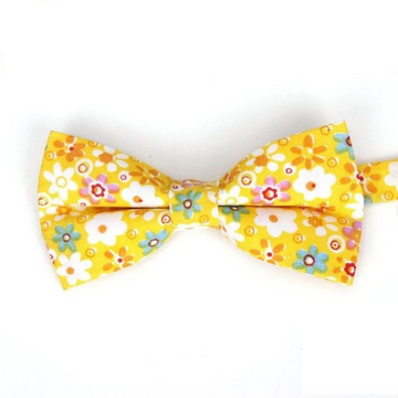 Alford Yellow Bow Tie