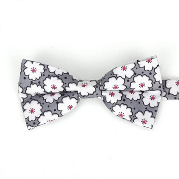 Bedford Gray Bow tie