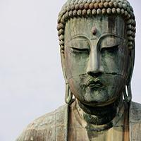 The Beginners Guide To Buddhism