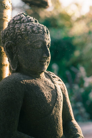 The Buddha on Gratitude