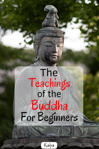 The teachings of the Buddha for beginners.
