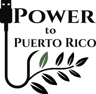 The logo of Power To P R Corp. Depicts a USB charging cord transforming into a vine woth one leaf.