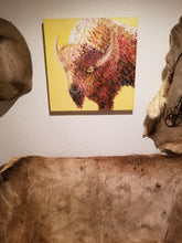 A big brown buffalo stares, bemused, against a backdrop of an autumn yellow. This square painting is hung on the wall of your favorite taxidermist's office, between two pelts with a third animal hide beneath it.