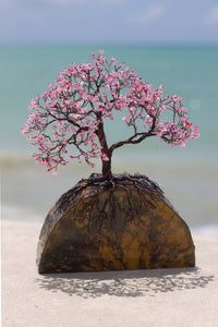 """Cheery Cherry Blossom"" is a miniture model of a cherry tree in bloom. It is artisan Bill Bouron's handsome handiwork made this tree happen and is selling it in cooperation with First Edition Acquisition."
