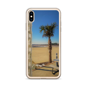 I took this photo of a palm tree on the East coast of the USA and the background is beautifully blue with a white chain of ice in the foreground, which has been gently slapped on an iphone protective cover. By Victor Allen