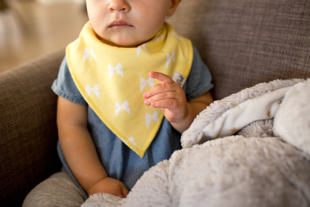 Two Pack Bandana Bibs in Coco  - Doodlebug's Children's Boutique