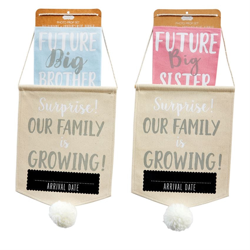 Future Big Sister Pet Prop Announcement Set  - Doodlebug's Children's Boutique