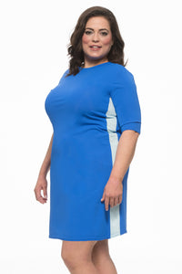 Ladies PLUS Royal Blue Runner Swim Dress
